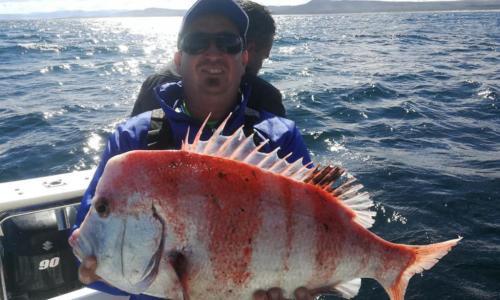Fishing2-1024x614